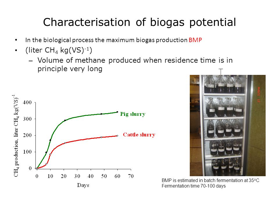 Characterisation of biogas potential