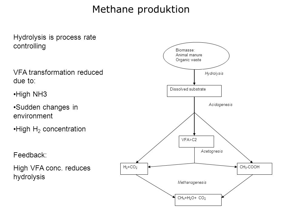 Methane produktion Hydrolysis is process rate controlling