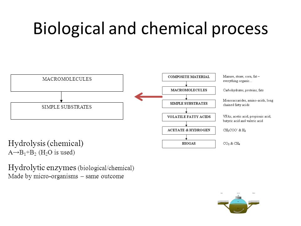 Biological and chemical process