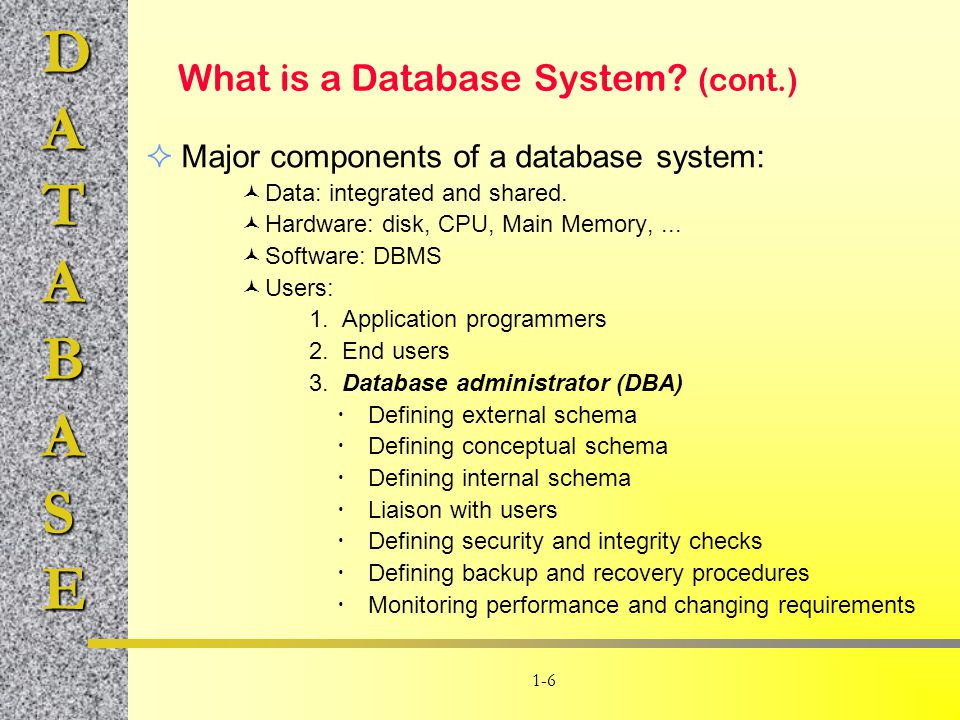 What is a Database System (cont.)