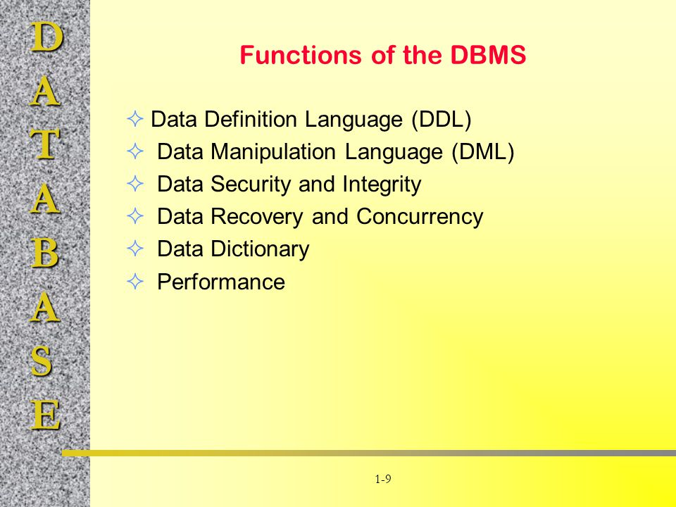 Functions of the DBMS Data Definition Language (DDL)