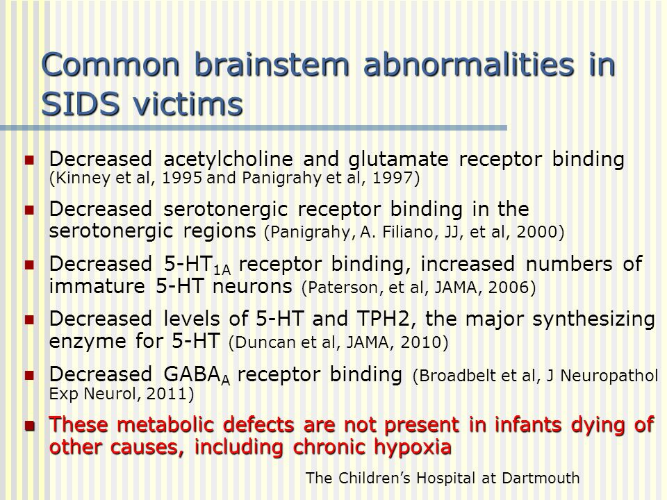 Common brainstem abnormalities in SIDS victims