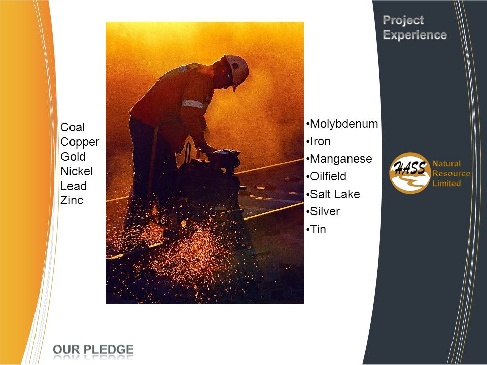 Project Experience Molybdenum Coal Iron Copper Manganese Gold Nickel