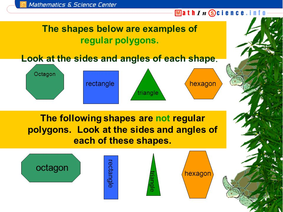 The shapes below are examples of regular polygons