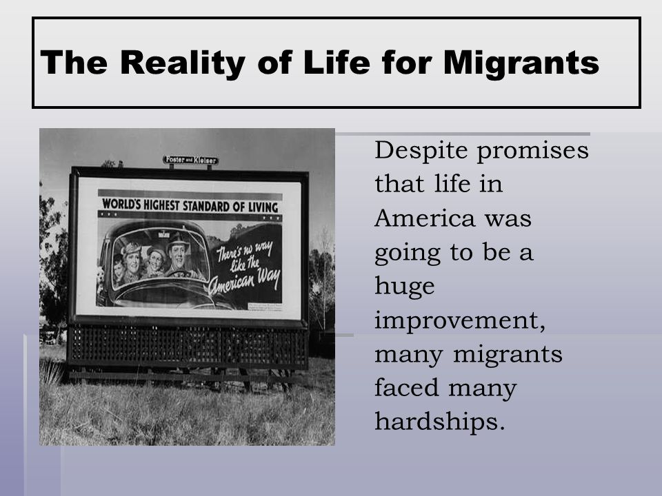 The Reality of Life for Migrants