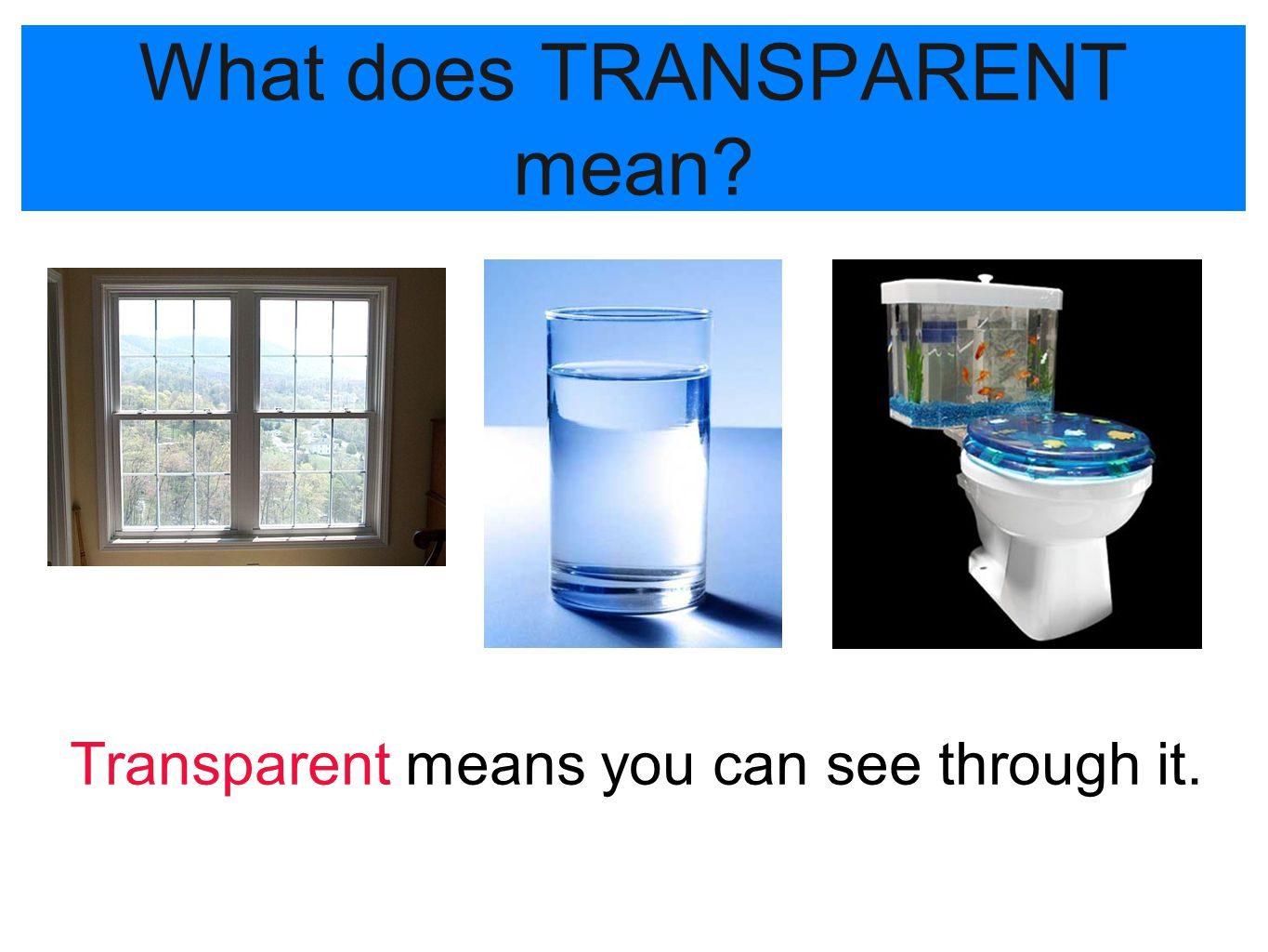 What does TRANSPARENT mean