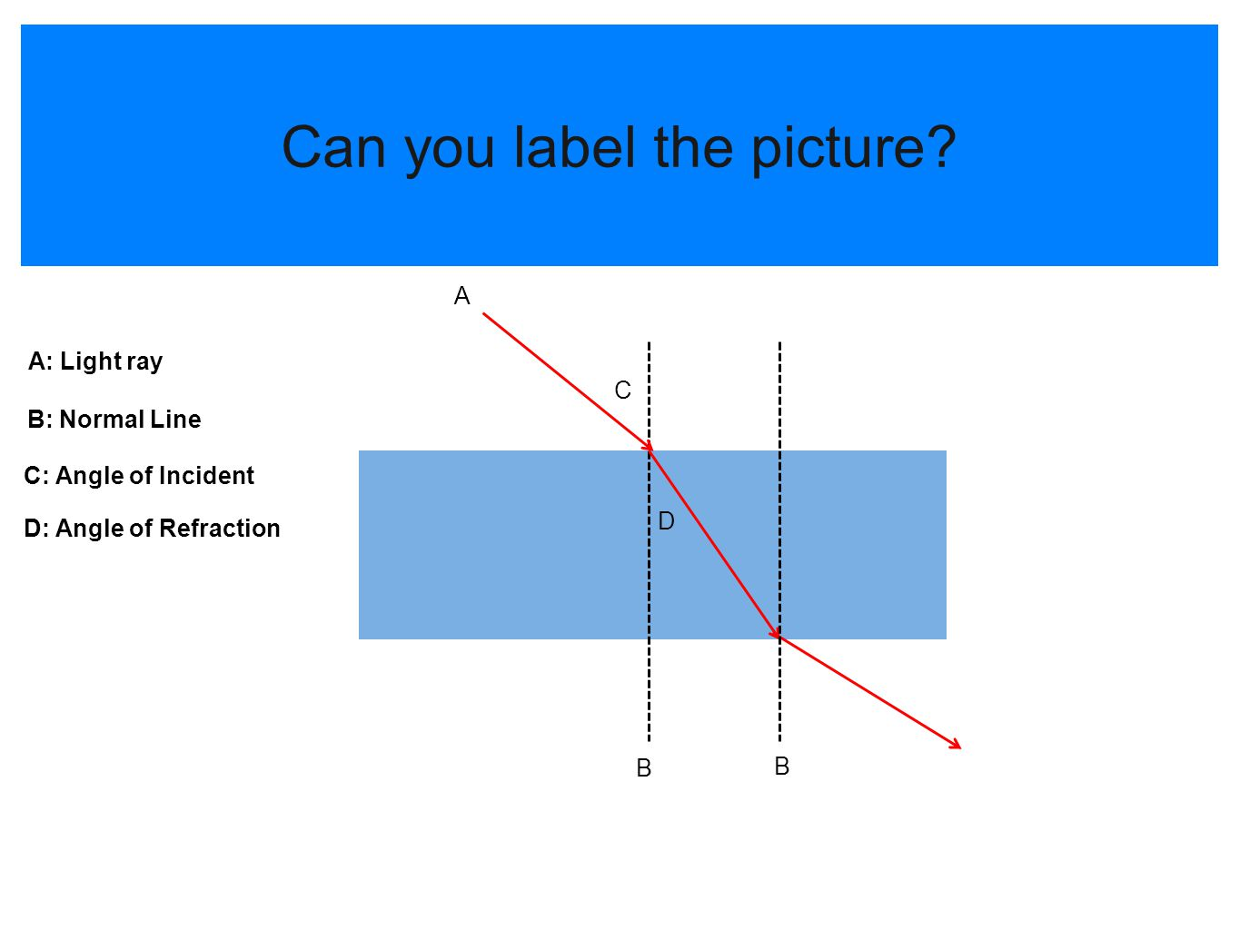 Can you label the picture