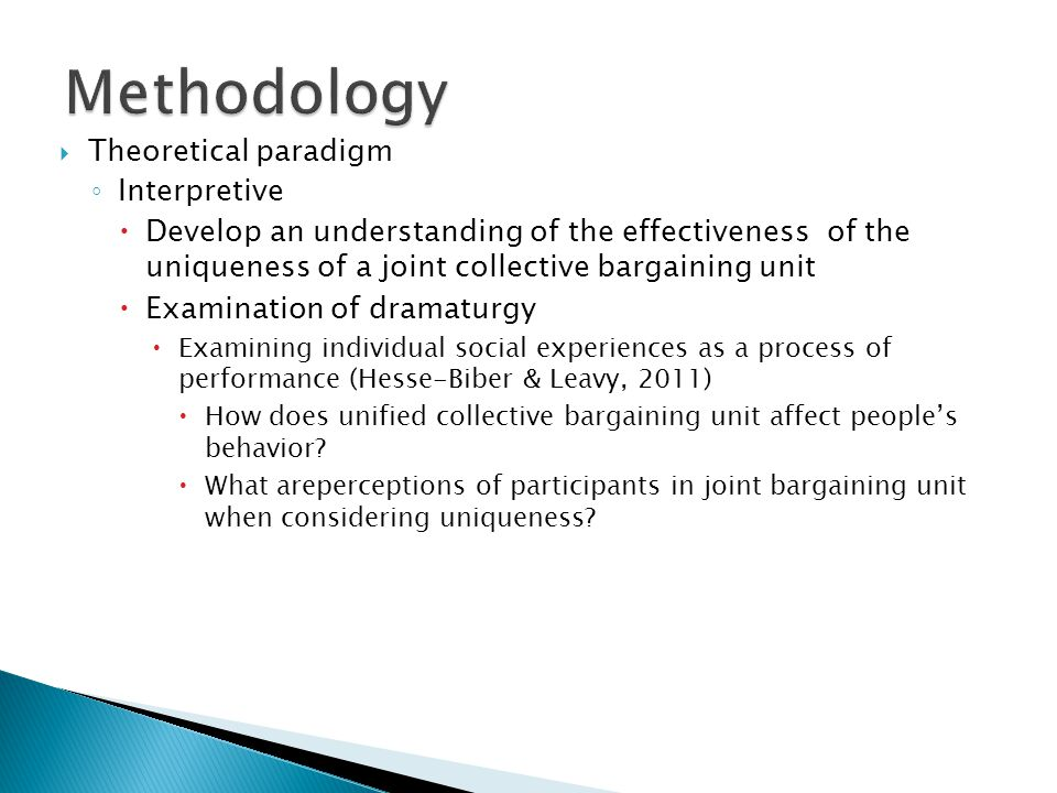 Methodology Theoretical paradigm Interpretive
