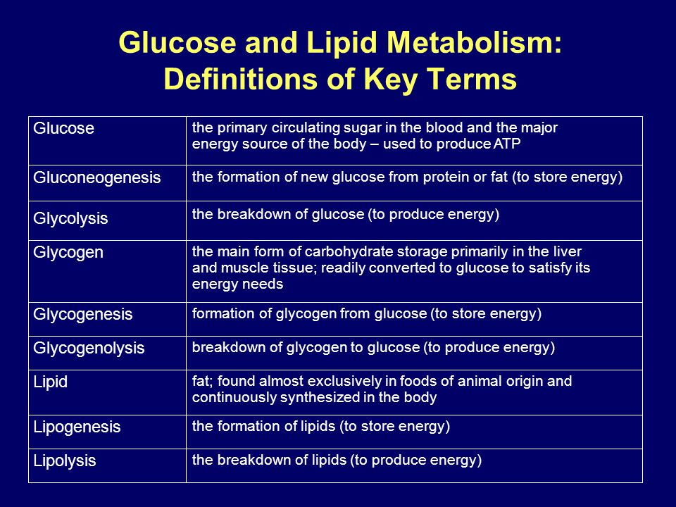 Glucose and Lipid Metabolism: Definitions of Key Terms