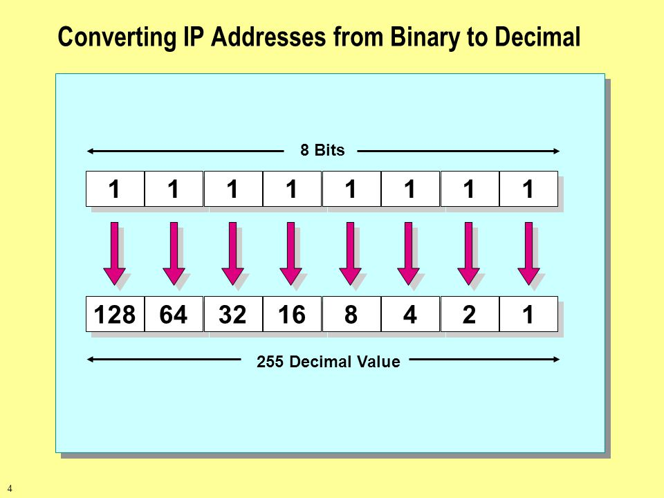 Converting IP Addresses from Binary to Decimal