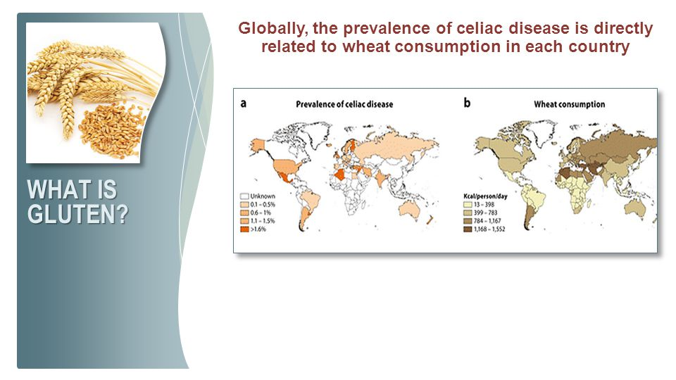 Globally, the prevalence of celiac disease is directly related to wheat consumption in each country