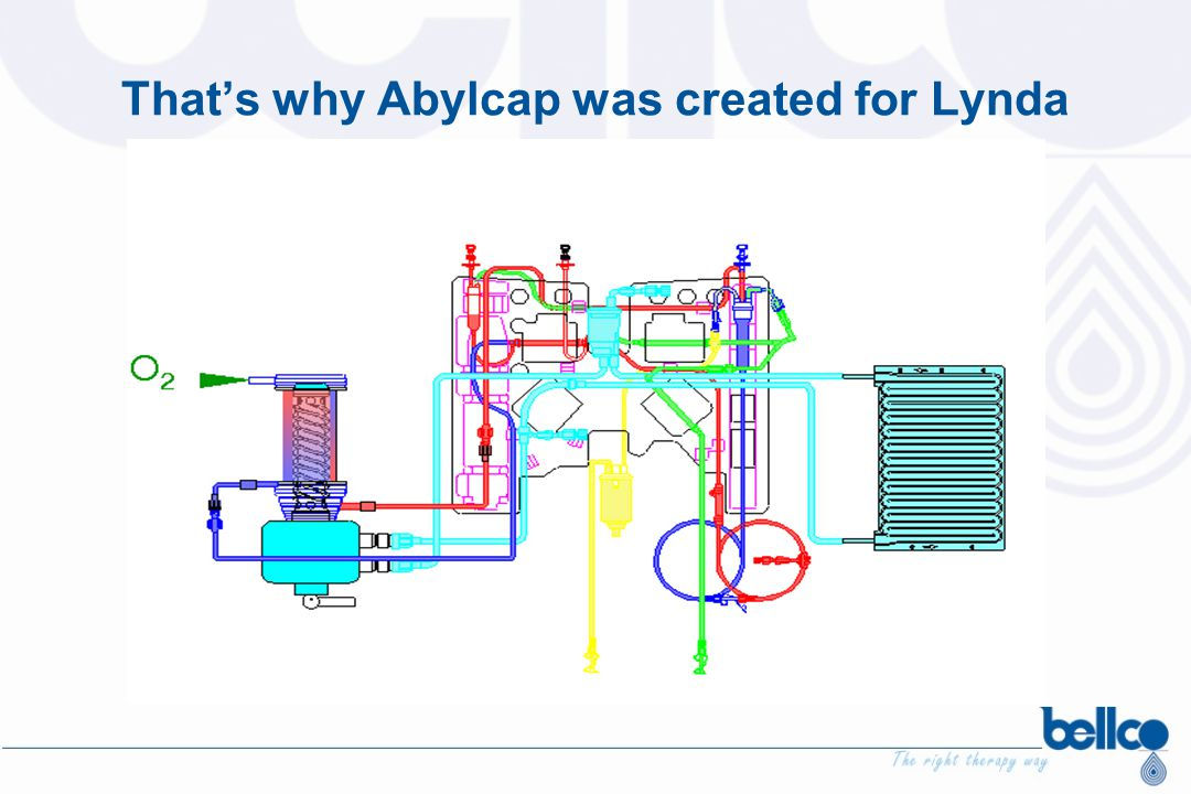 That's why Abylcap was created for Lynda