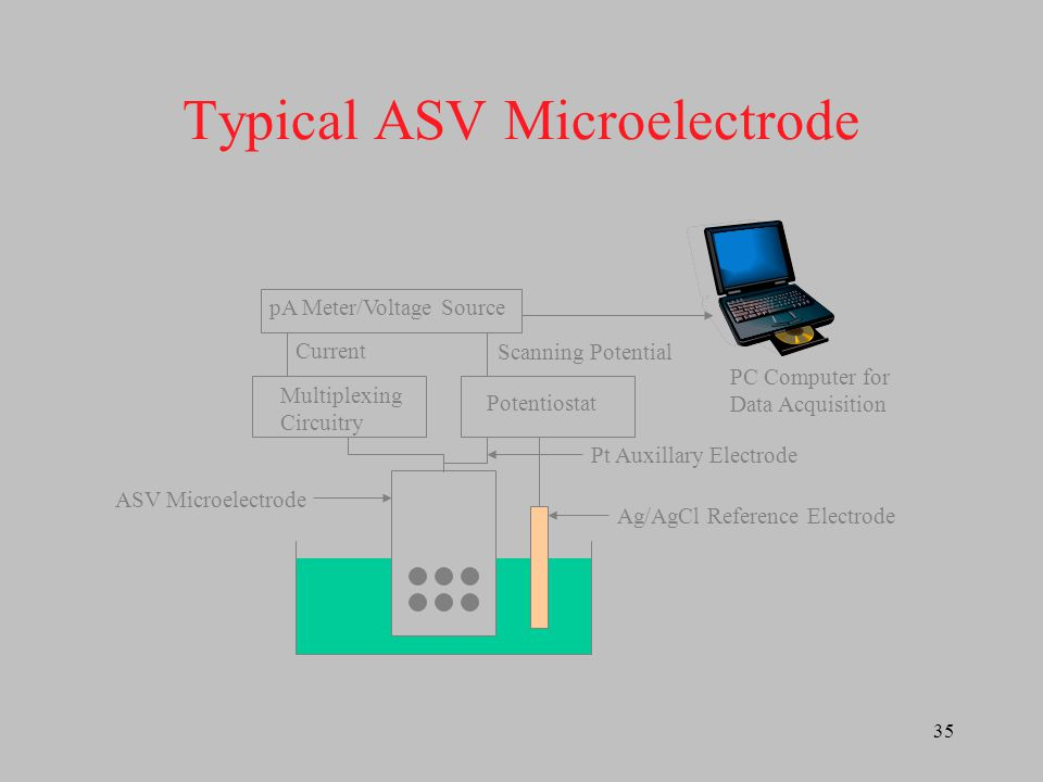 Typical ASV Microelectrode