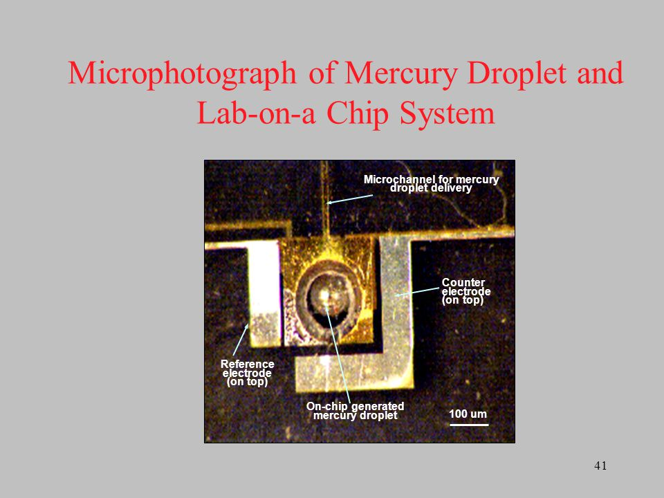 Microphotograph of Mercury Droplet and Lab-on-a Chip System