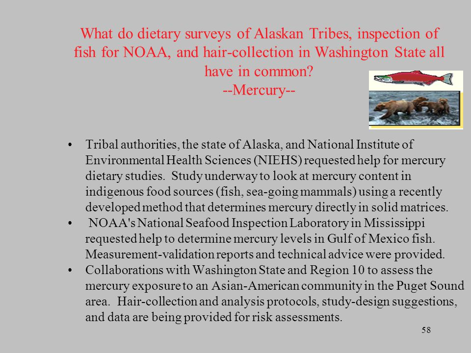What do dietary surveys of Alaskan Tribes, inspection of fish for NOAA, and hair-collection in Washington State all have in common --Mercury--