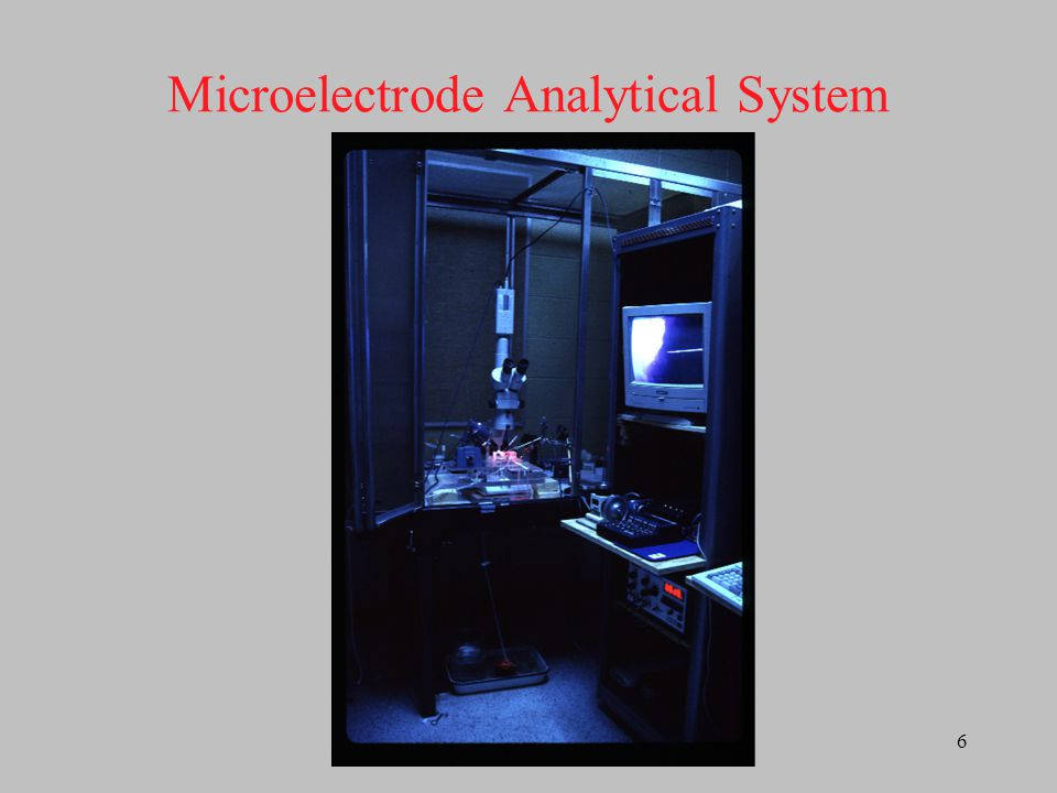 Microelectrode Analytical System