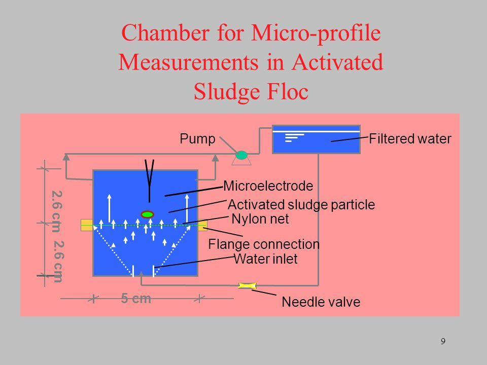 Chamber for Micro-profile Measurements in Activated Sludge Floc