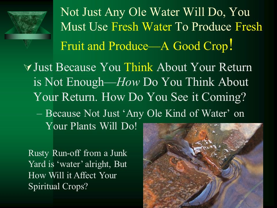 Not Just Any Ole Water Will Do, You Must Use Fresh Water To Produce Fresh Fruit and Produce—A Good Crop!