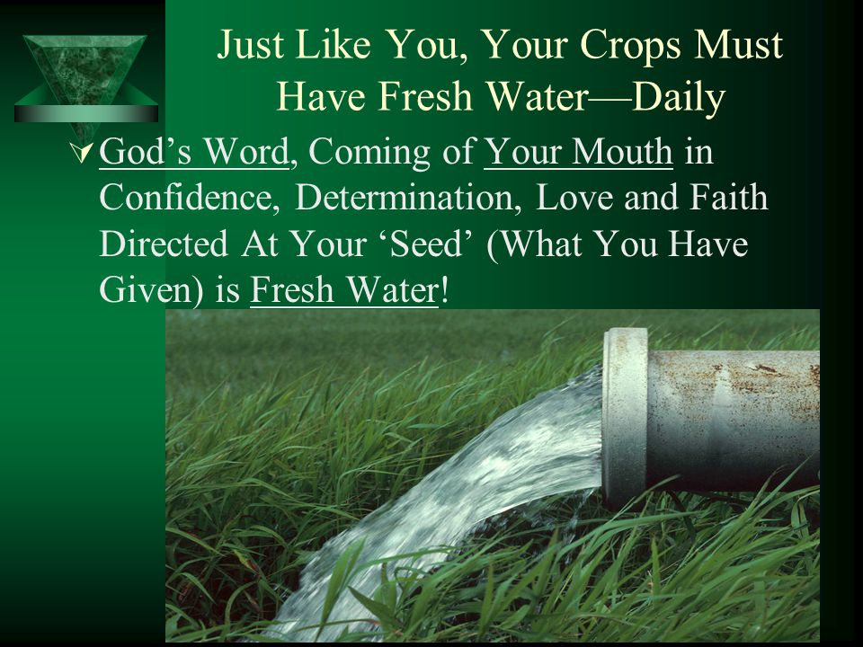 Just Like You, Your Crops Must Have Fresh Water—Daily