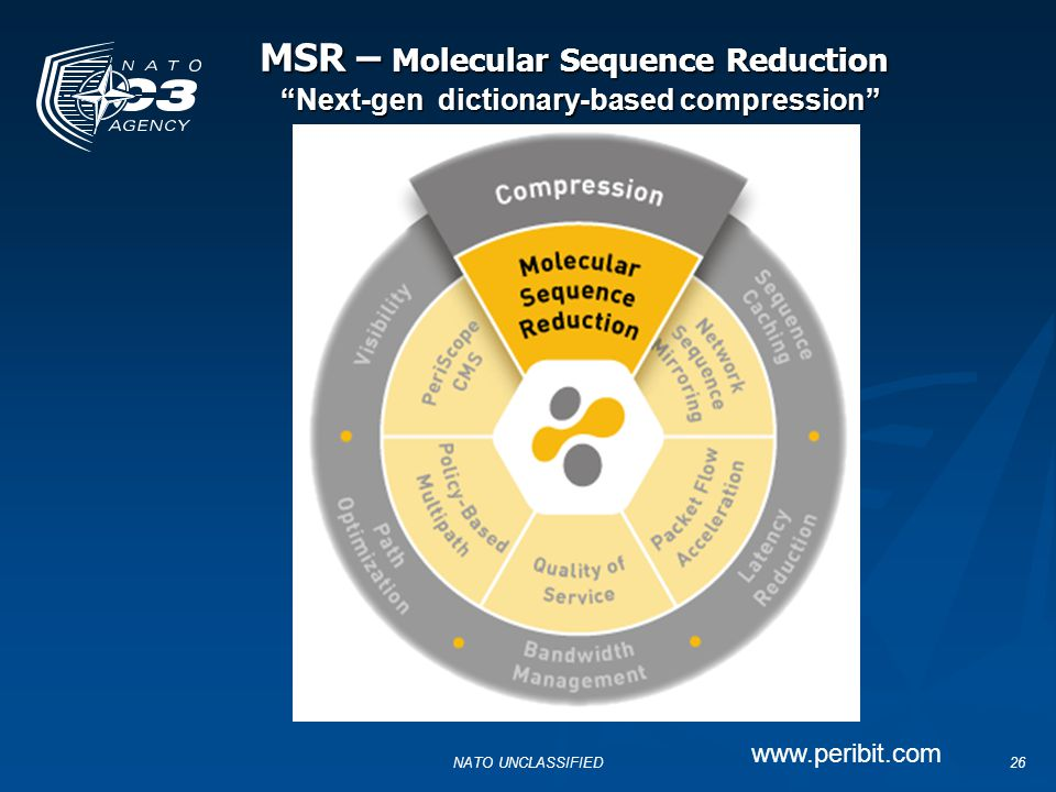 MSR – Molecular Sequence Reduction