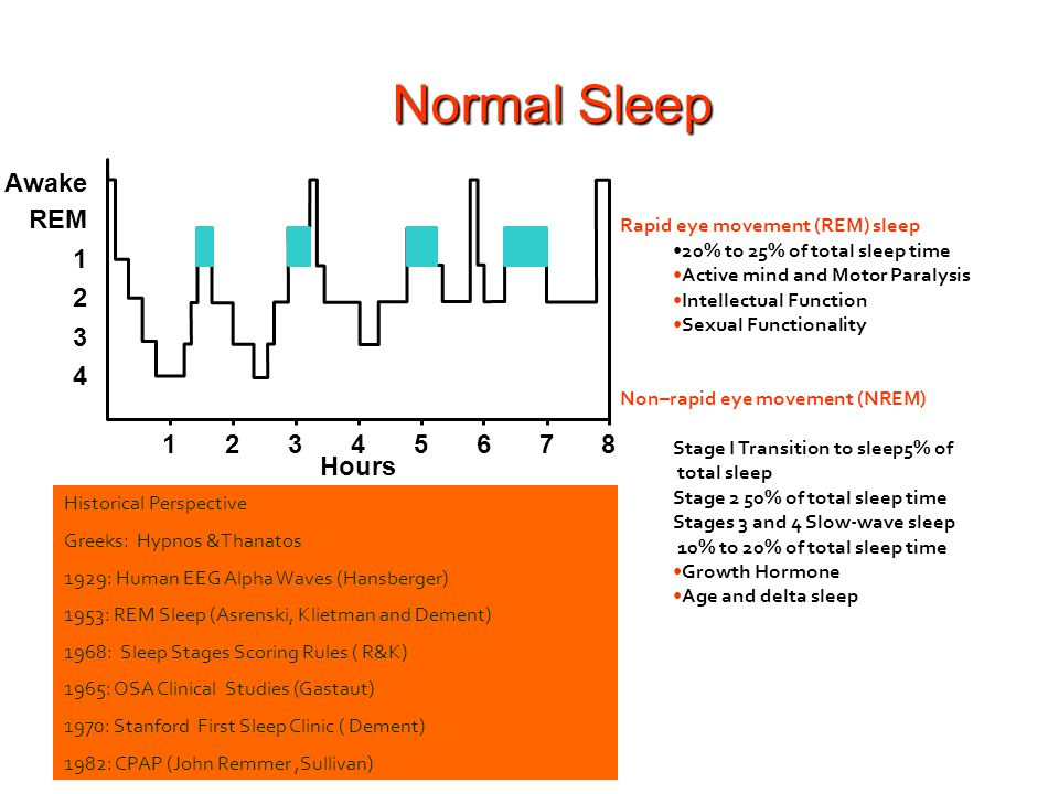Normal Sleep 1 2 3 5 6 7 8 4 REM Awake Hours