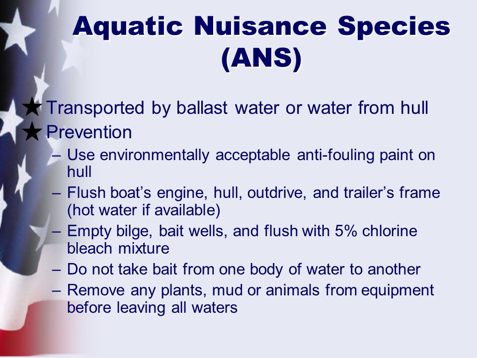 Aquatic Nuisance Species (ANS)