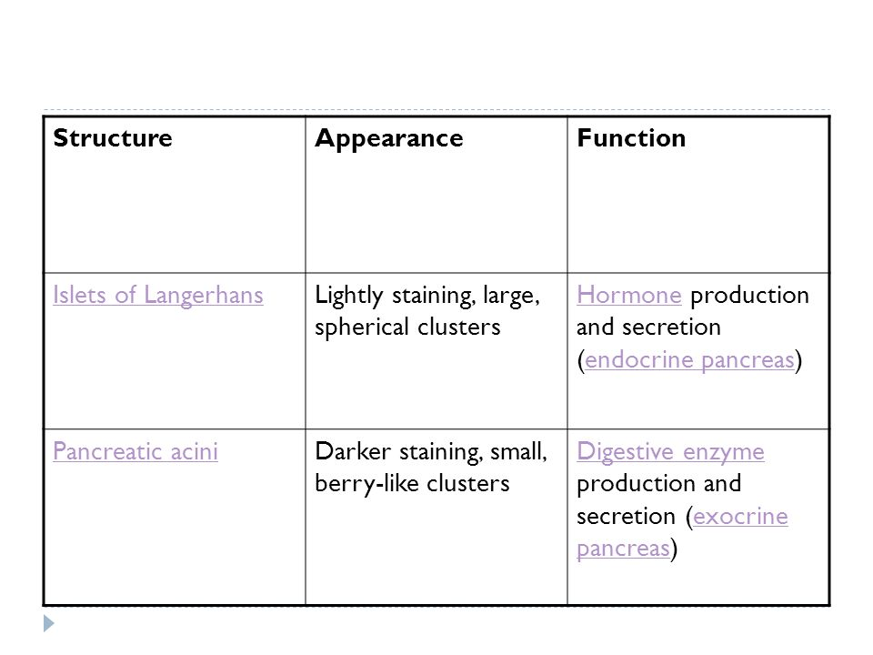 Structure Appearance. Function. Islets of Langerhans. Lightly staining, large, spherical clusters.