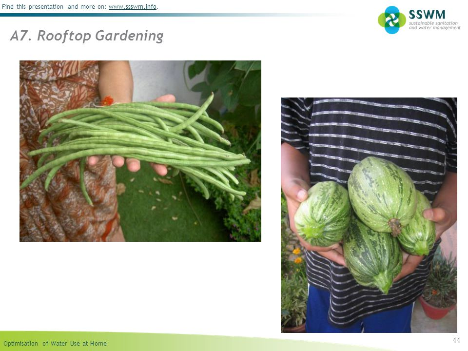 A7. Rooftop Gardening