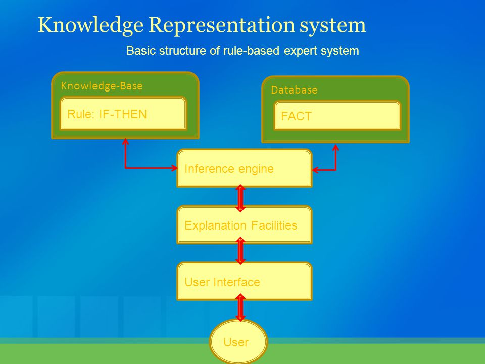 Knowledge Representation system