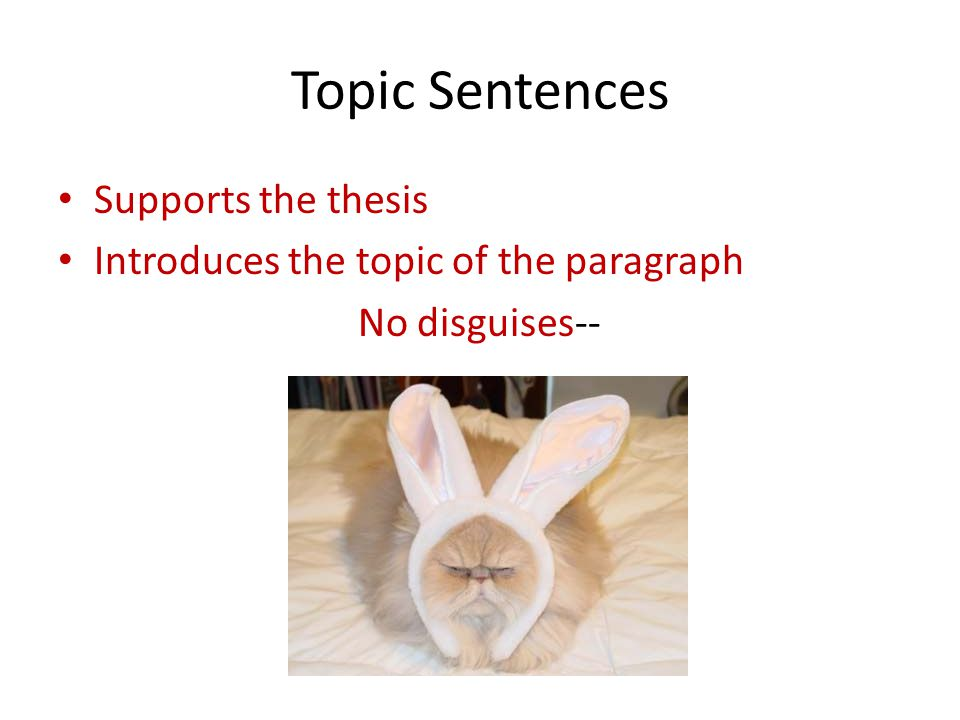 Topic Sentences Supports the thesis