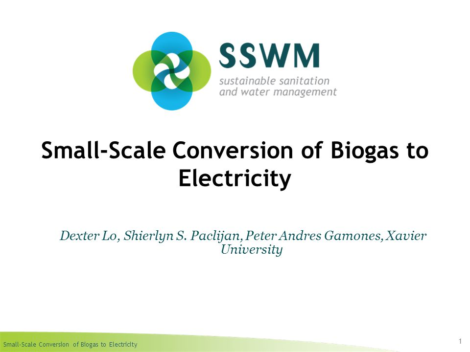 Small-Scale Conversion of Biogas to Electricity