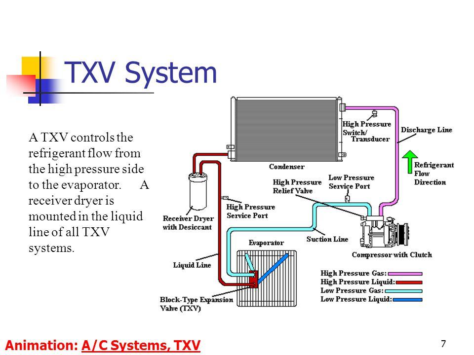 TXV System