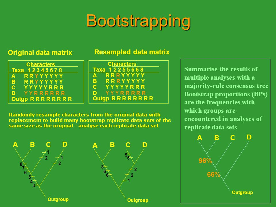 Bootstrapping Original data matrix. Resampled data matrix. Characters. Characters. Taxa 1 2 3 4 5 6 7 8.