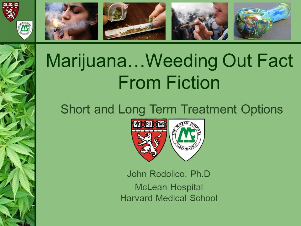 Marijuana…Weeding Out Fact From Fiction