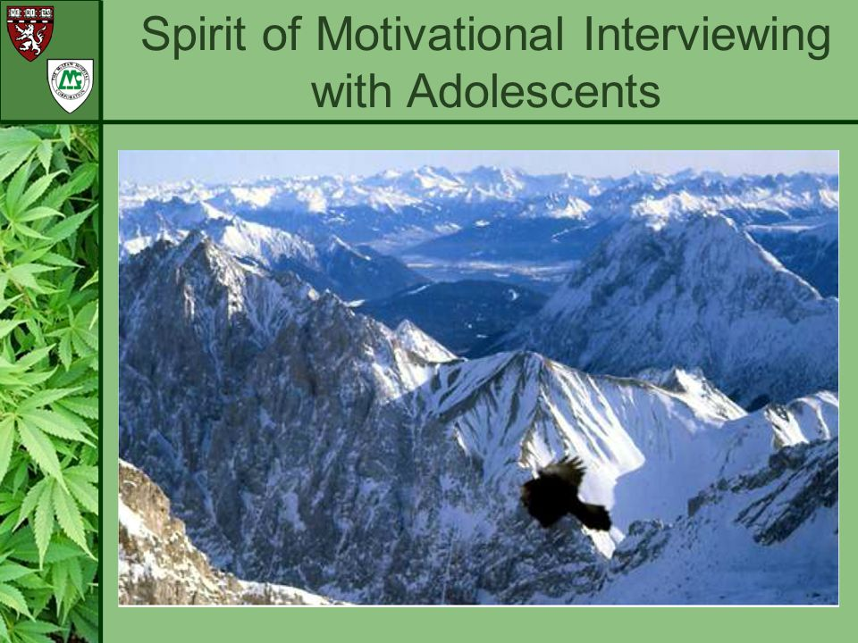 Spirit of Motivational Interviewing with Adolescents