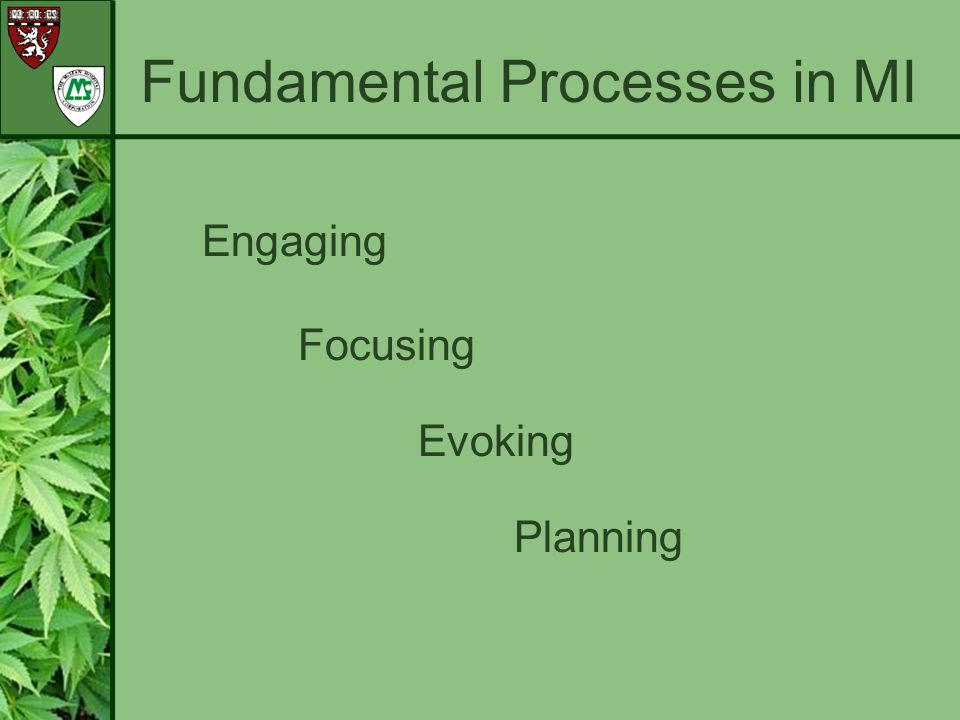 Fundamental Processes in MI