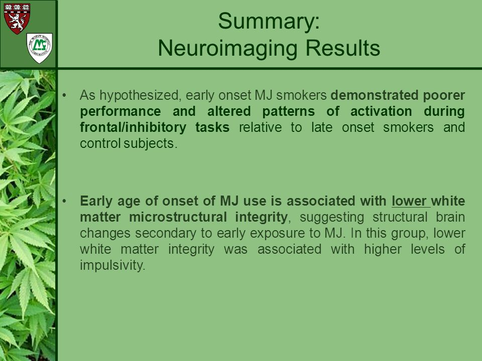 Summary: Neuroimaging Results
