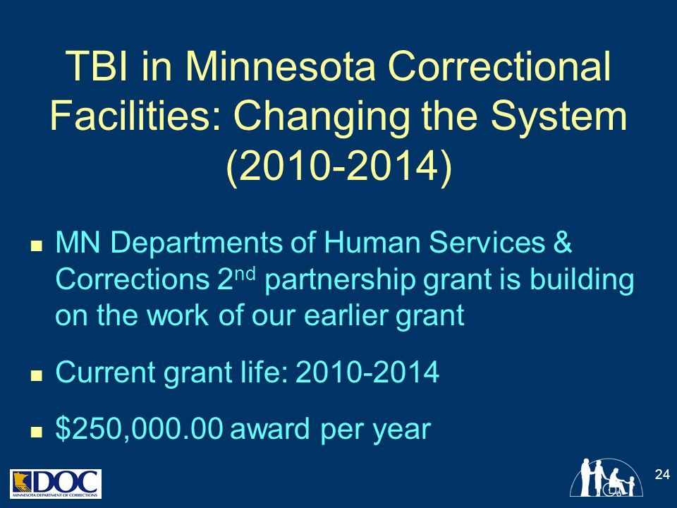 TBI in Minnesota Correctional Facilities: Changing the System ( )