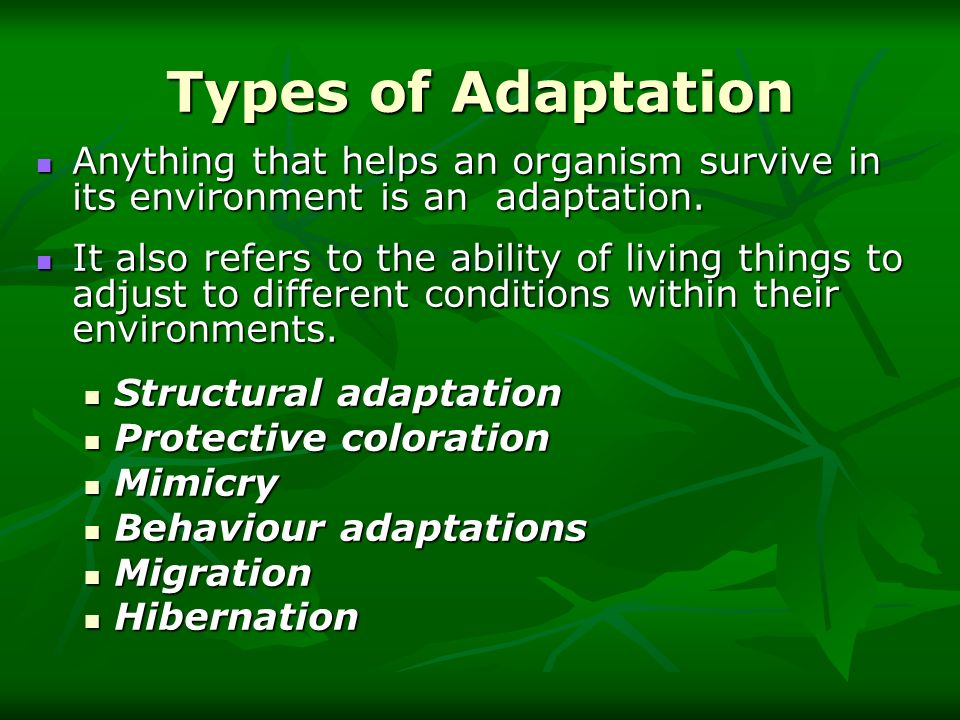 Types of Adaptation Anything that helps an organism survive in its environment is an adaptation.