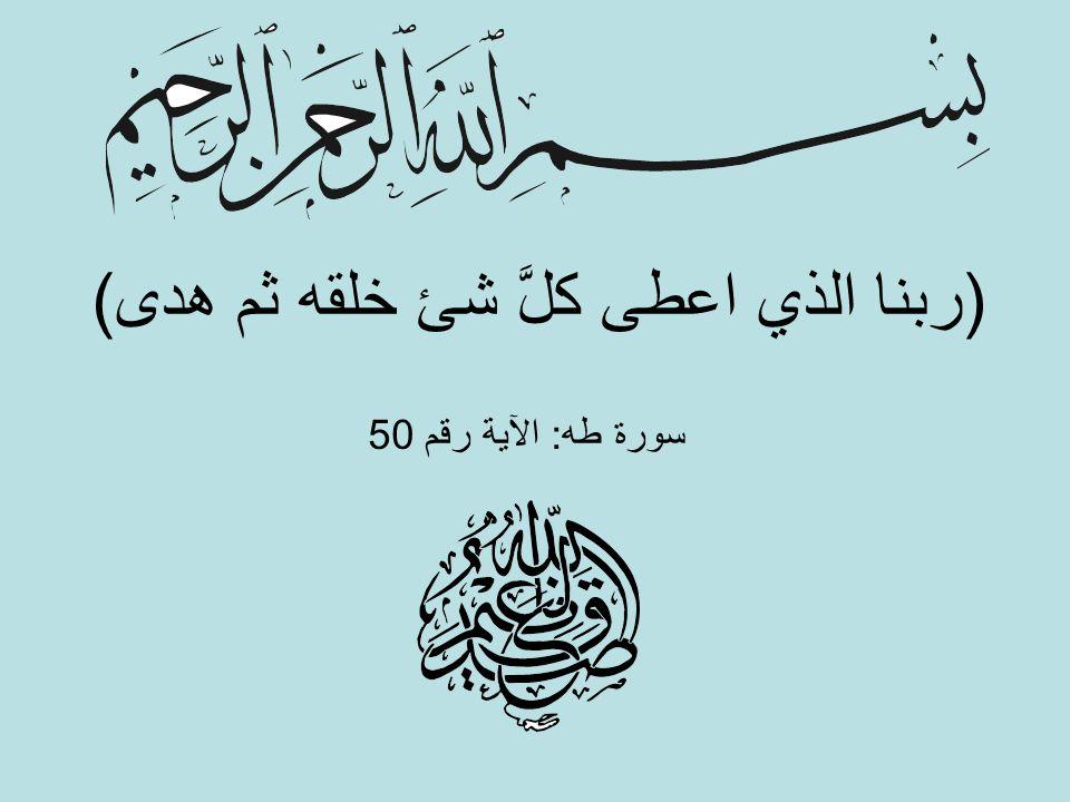 (ربنا الذي اعطى كلَّ شئ خلقه ثم هدى) سورة طه: الآية رقم 50