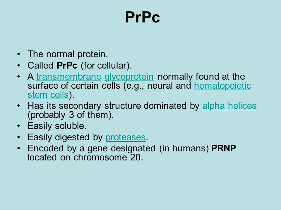 PrPc The normal protein. Called PrPc (for cellular).
