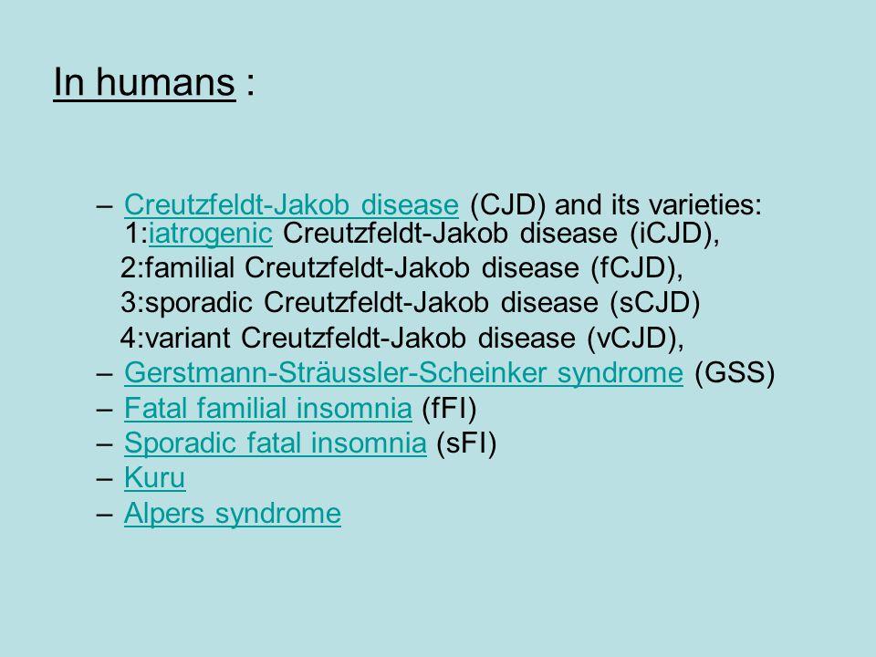 In humans : Creutzfeldt-Jakob disease (CJD) and its varieties: 1:iatrogenic Creutzfeldt-Jakob disease (iCJD),