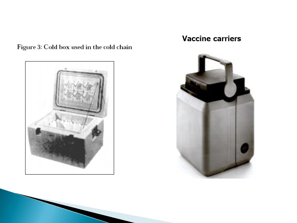 Vaccine carriers