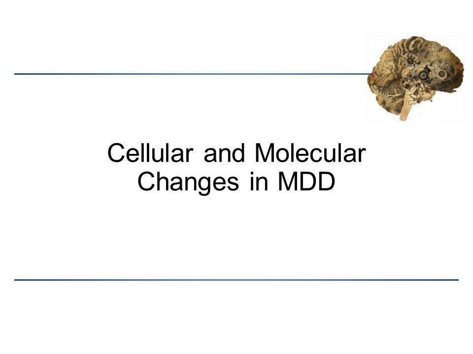 Cellular and Molecular Changes in MDD