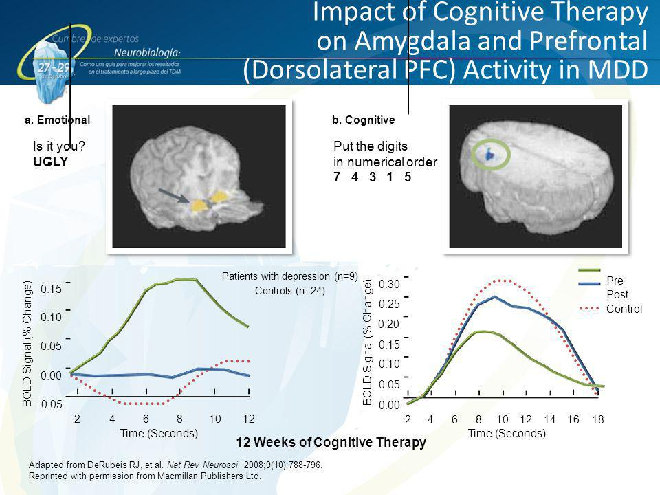 12 Weeks of Cognitive Therapy