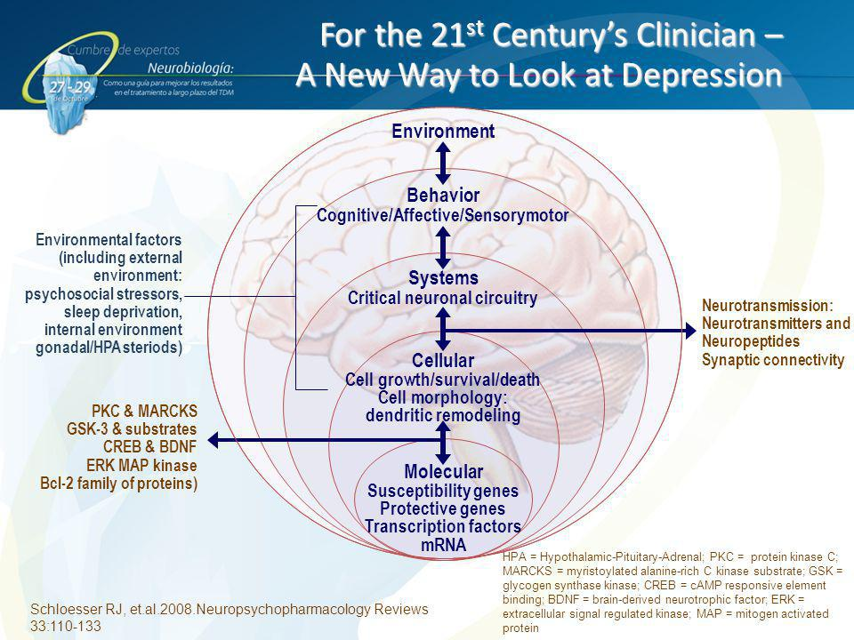 For the 21st Century's Clinician – A New Way to Look at Depression
