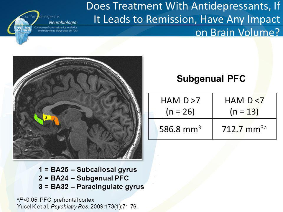 Does Treatment With Antidepressants, If It Leads to Remission, Have Any Impact on Brain Volume