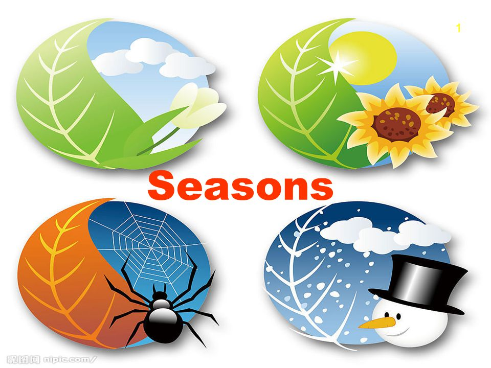 1 Seasons