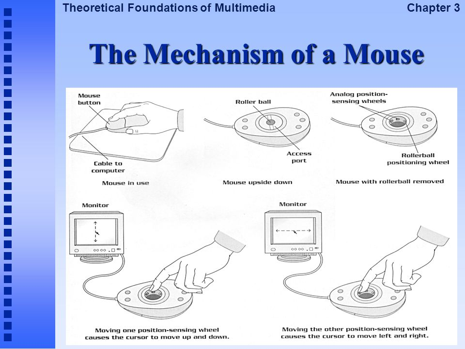 The Mechanism of a Mouse