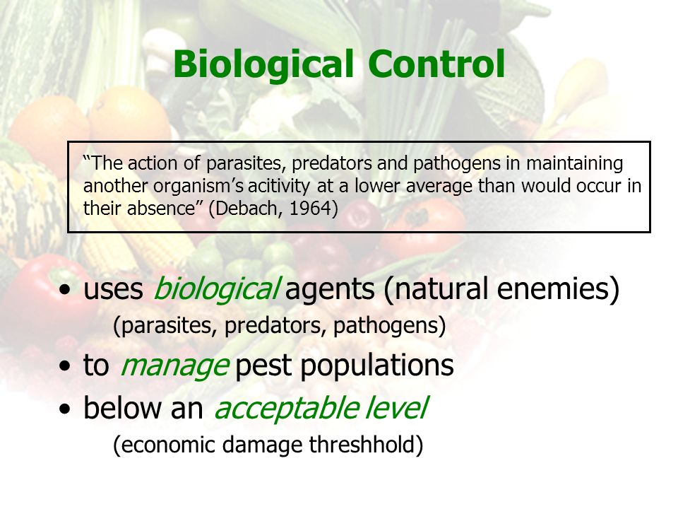 Biological Control uses biological agents (natural enemies)